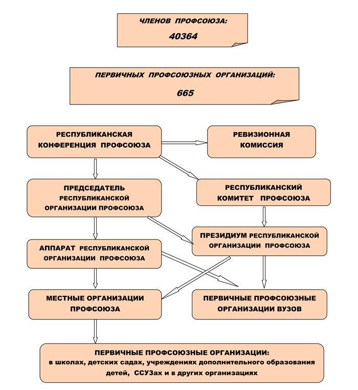 Структура-организации_01